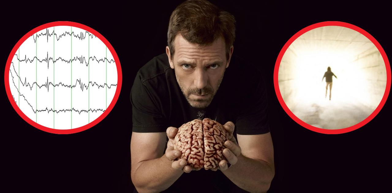 Эффект NDE: что происходит с мозгом во время смерти? Выводы ученых