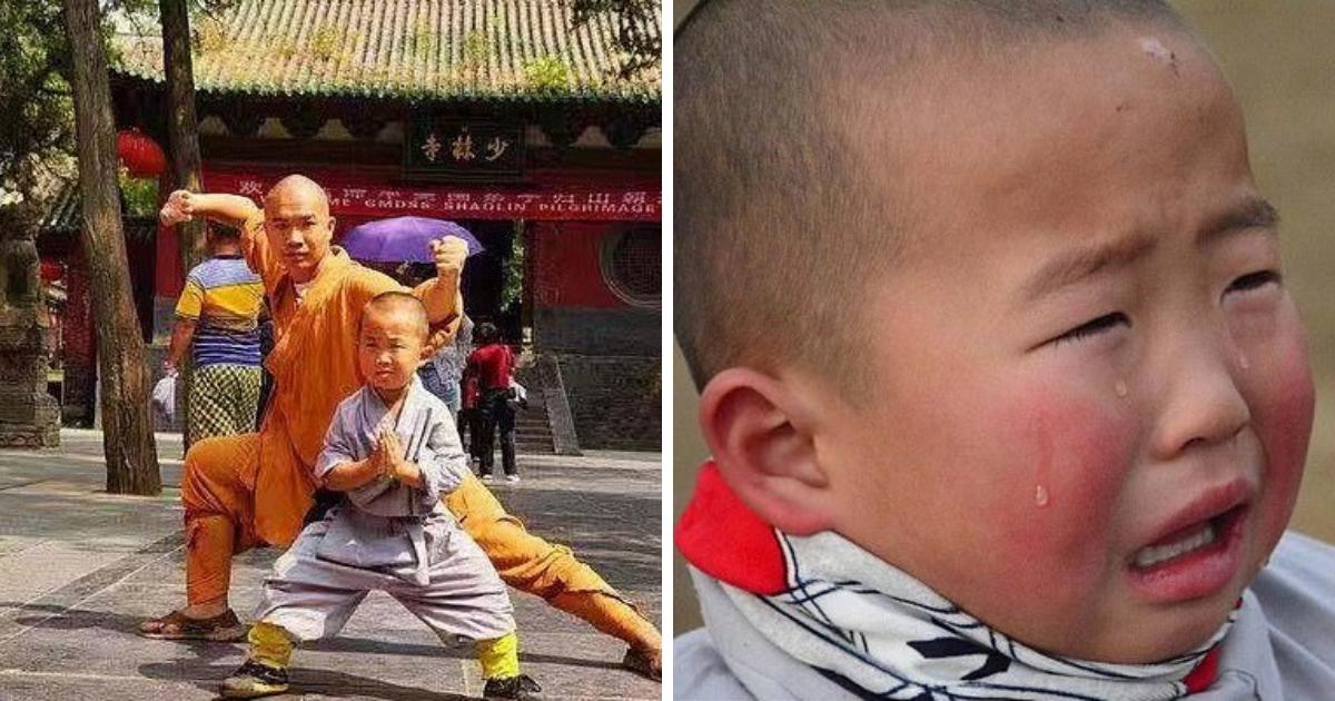 Трехлетний мастер кунг-фу: история маленького шаолиньского монаха