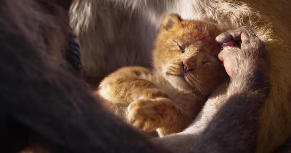 """Фото Новый """"Король Лев"""". Чем удивит знакомая история?"""