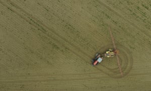 EU glyphosate approval was based on plagiarised Monsanto text, report finds