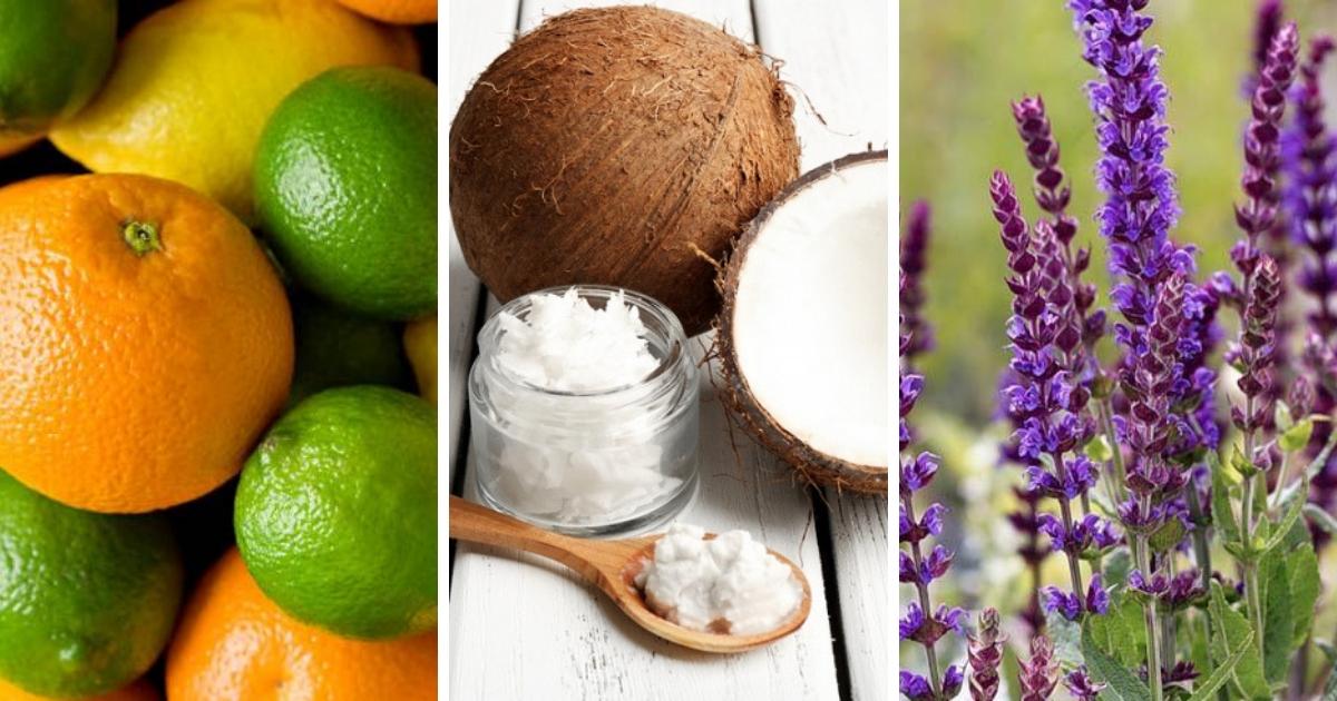 Фото От пота и запаха: 5 натуральных средств от потливости