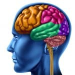 Brain Aging Patterns May Occur at a Faster Rate in Psychosis Patients