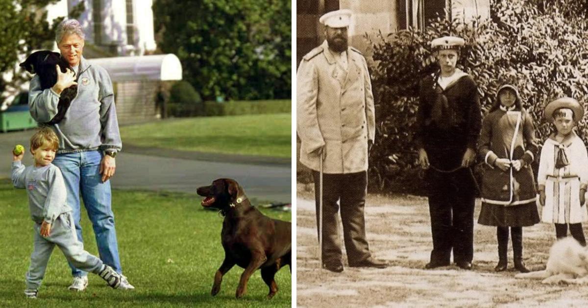 Фото Корги и скворец: каких животных предпочитали знаменитые люди?