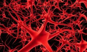 New drug raises hopes of reversing memory loss in old age