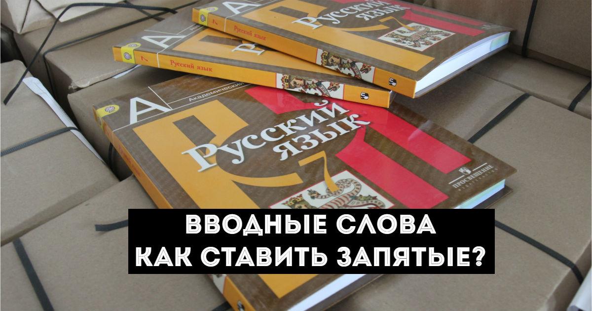 Фото Вводные слова в русском языке. Как ставить запятые в предложениях с ними?