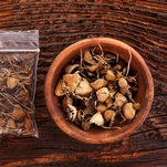 Michael Pollan: Not So Fast on Psychedelic Mushrooms