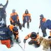 На Алтае свернули операцию по поиску новосибирских туристов