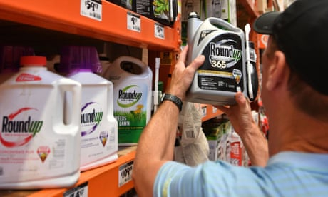Photo of Monsanto must pay couple $2bn in largest verdict yet over cancer claims