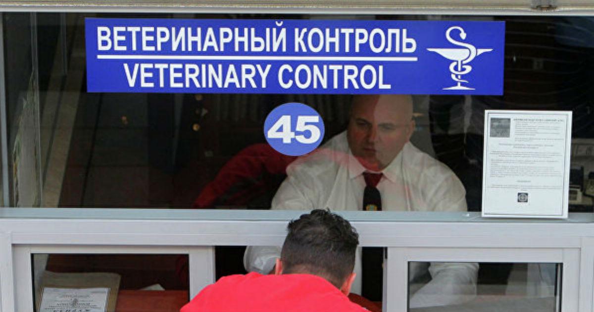Сжигатели еды. В РФ меняют закон ради загрузки печей ветнадзора