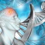 Genetic Hotspot May Drive Psychosis in Schizophrenia, Bipolar Disorder