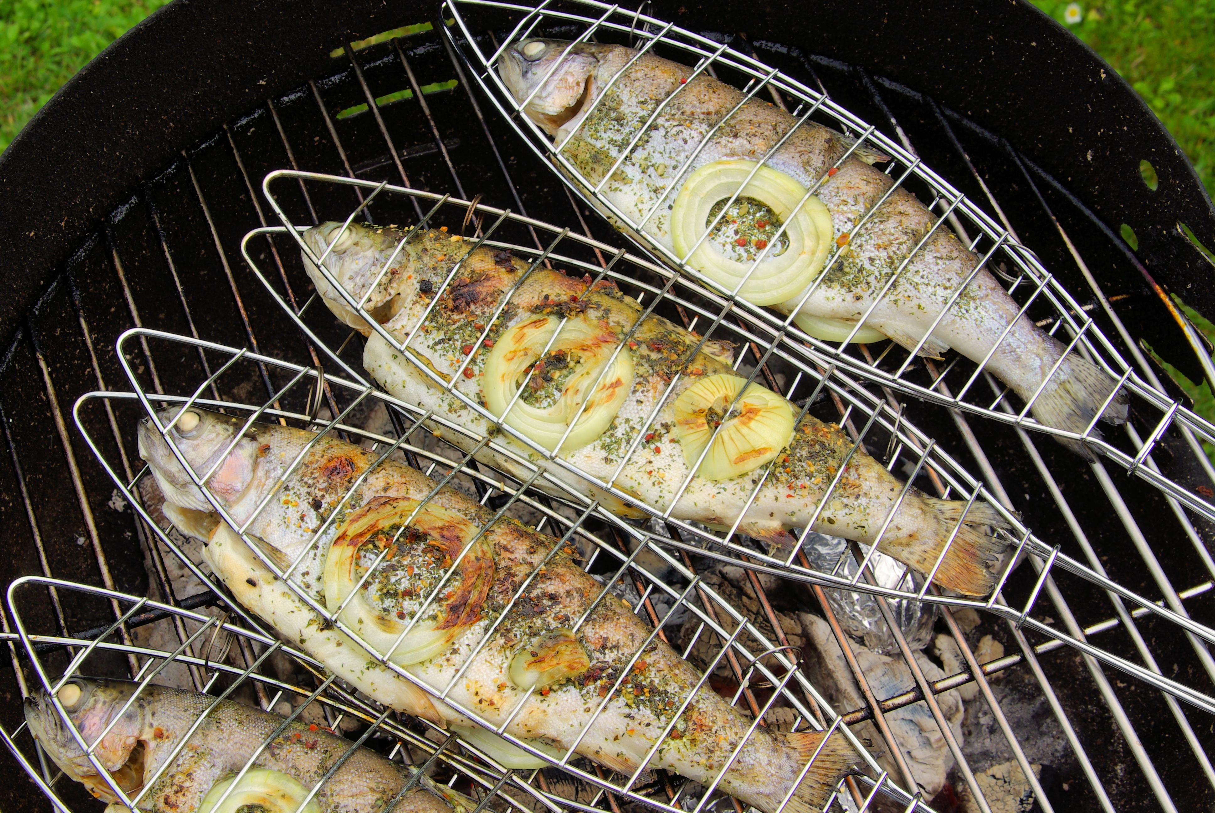 Форель на гриле: рецепт для пикника