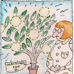 Q&A: I Have the Tree. Where's the Grapefruit?
