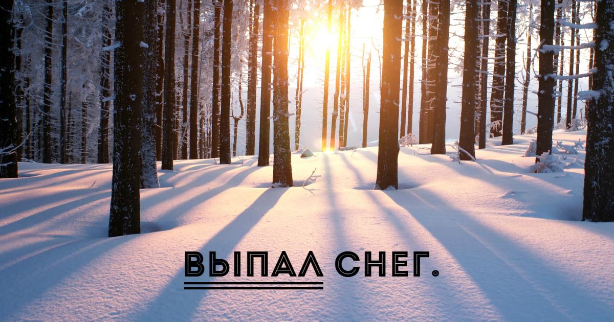 Фото Сказуемое в предложении. Типы сказуемых в русском языке. Примеры