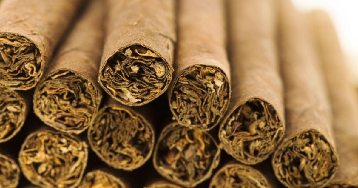 Ученые: сигареты без фильтра - самые вредные для здоровья
