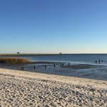 Mississippi Closes Beaches Because of Toxic Algae Blooms