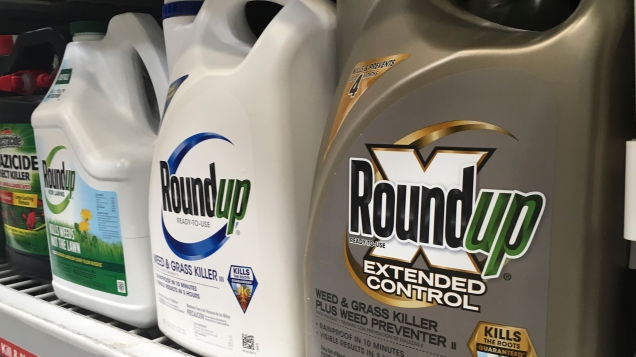 Photo of Judge Slashes Payout in Roundup Lawsuit, But Calls Monsanto's Conduct 'Reprehensible'