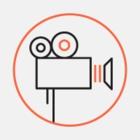 Киберпанк-видео от ИТМО. Оно посвящено технологичному Петербургу