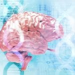 Photo of Study IDs Gene Sets Tied to 5 Mental Disorders