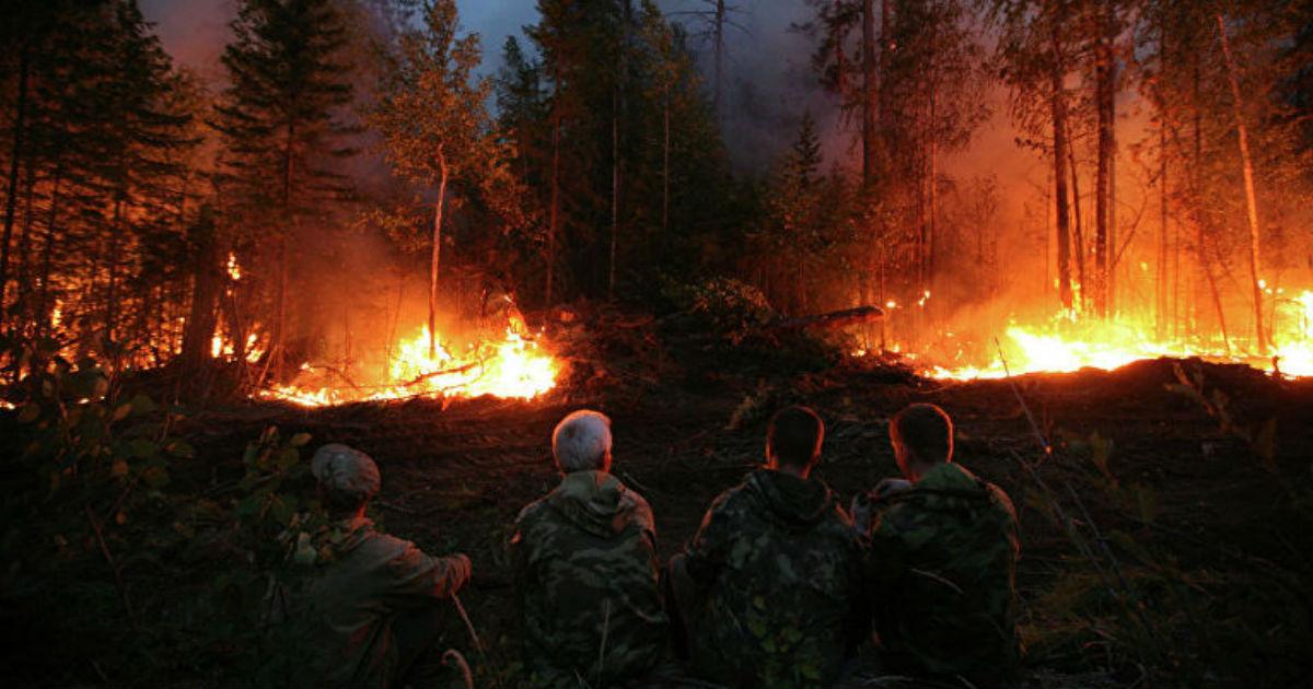 Фото Гигантские пожары в Сибири никто не тушит. Что происходит?