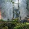 К тушению лесных пожаров в Красноярском крае привлечены резервы МЧС