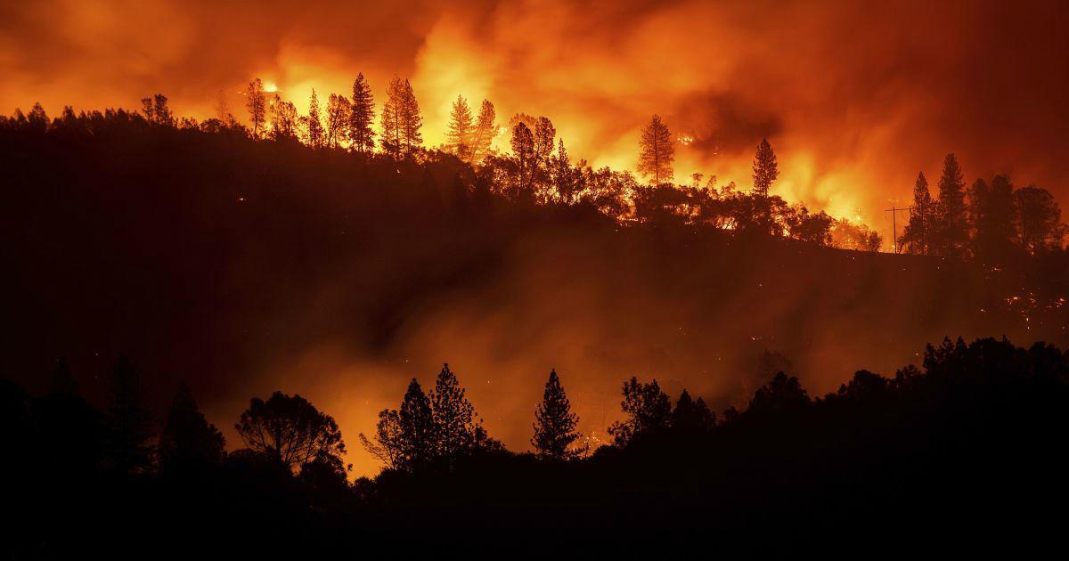 Авиация МЧС начала тушение лесных пожаров в Сибири
