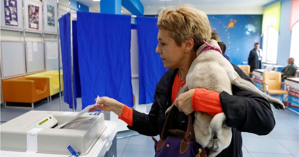 Фото Мажоритарная и пропорциональная избирательная система - в чем разница