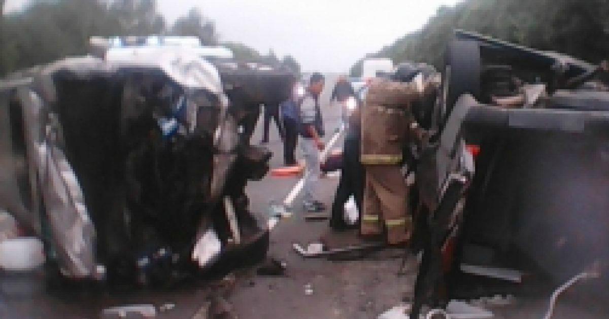 Фото 7 человек разбились в микроавтобусе в Рязанской области