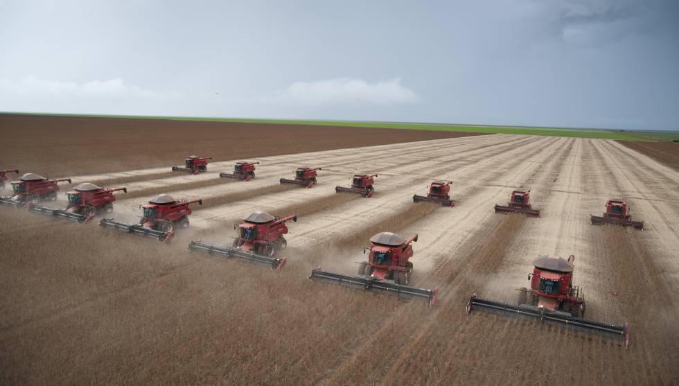 Photo of Mundo precisa de outra dieta alimentar para combater a crise climática, alerta ONU