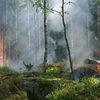 Фото Названы причины лесных пожаров в Бурятии