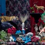 Photo of The Wonderful World of Needle-Felted Animals