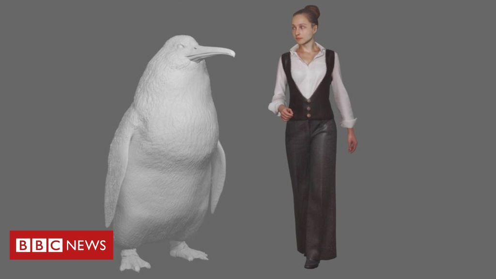 Photo of 'Human-sized penguin' lived in New Zealand