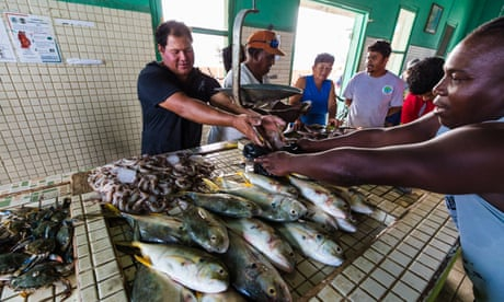 Photo of Belize's fishers net bounty of trailblazing approach – in pictures