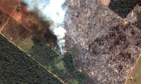 Photo of Amazon fires: what is happening and is there anything we can do?