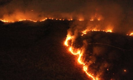 Photo of Amazon rainforest fires: global leaders urged to divert Brazil from 'suicide' path