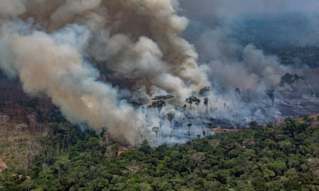 Photo of Amazon rainforest fires: Brazil to reject $20m pledged by G7