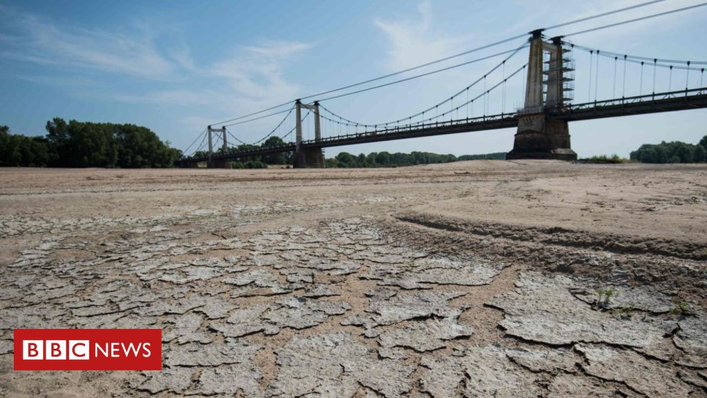 Photo of Summer heat killed nearly 1,500 in France, officials say