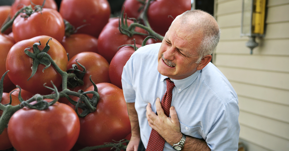 Фото Кардиолог рассказал об опасности употребления помидоров