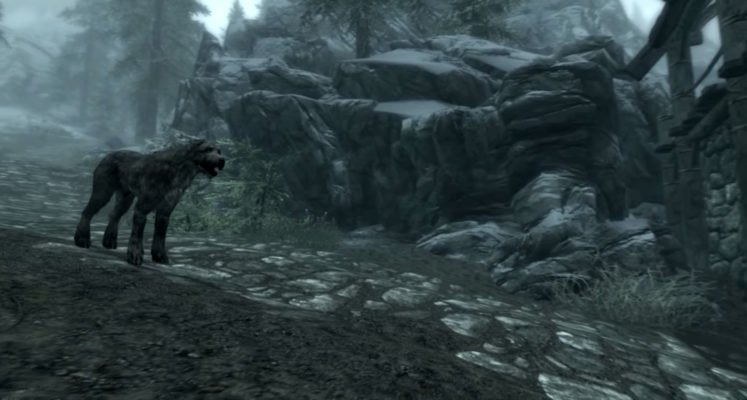 Photo of The best 'Skyrim' followers and how to get them