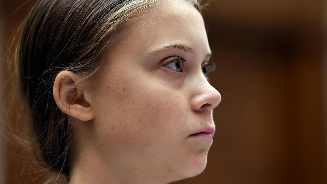 Photo of No One Seemed To Notice Greta Thunberg's Critique Of The Green New Deal