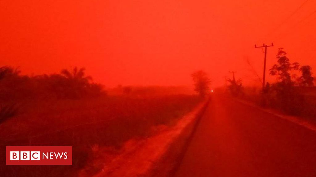 Photo of Indonesia haze causes sky to turn blood red
