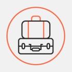 Перевозчики — о влиянии электронных виз на турпоток в Петербург