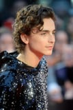 Timothée Chalamet's Sequin Hoodie Is the Only Outfit That Matters Right Now