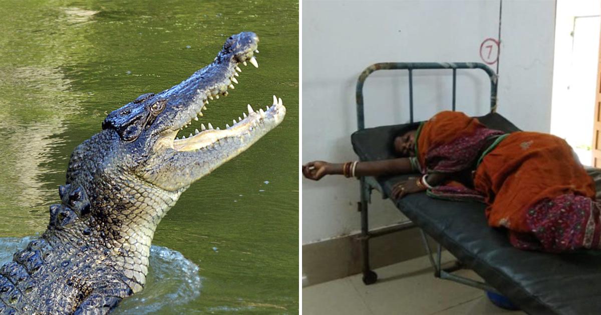 Фото Отбила свою жизнь. Женщина целый час боролась с крокодилом
