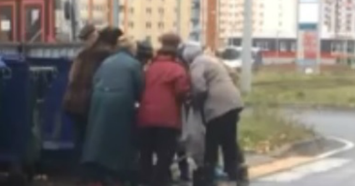 Пенсионеры устроили дpaку за продукты с помойки в Ярославле