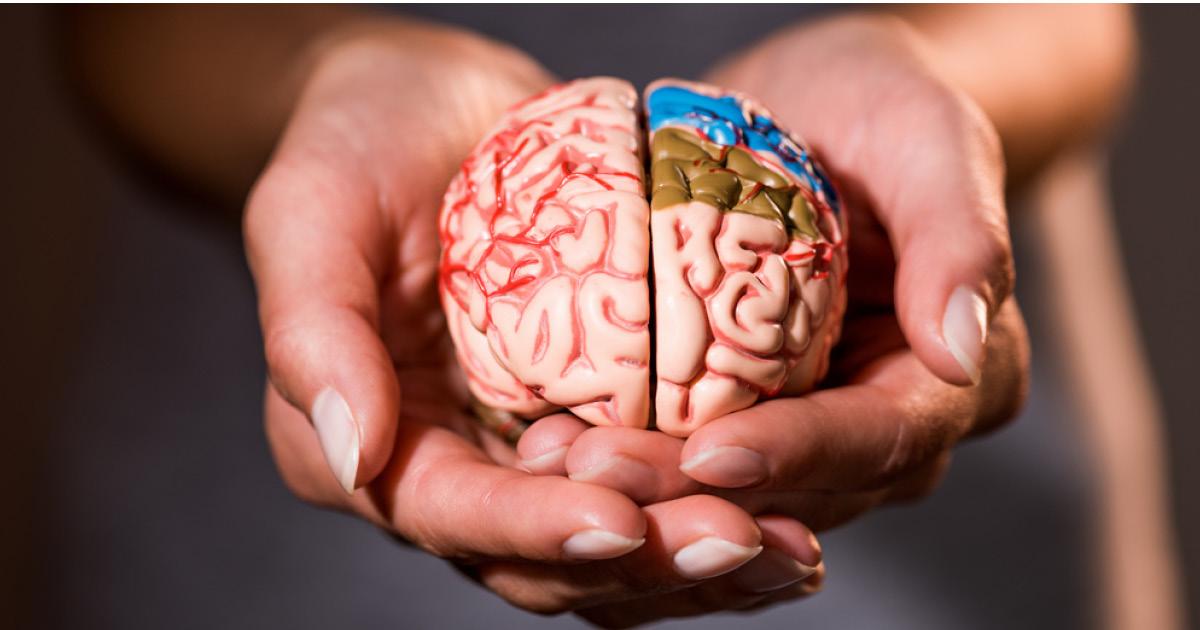 Франкенштейн нашего времени: ученые вернули к жизни мозг