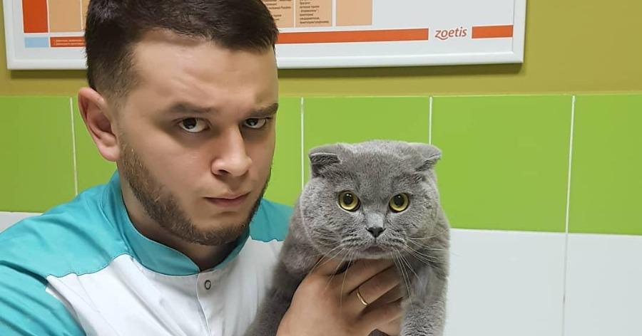 Фото Зоозащитница пыталась наказать ветеринара, спасающего зверей от усыпления