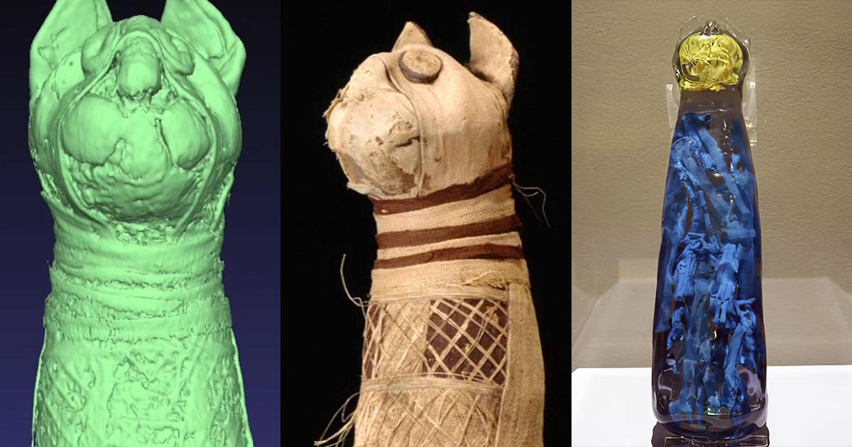 Что же было в загадочной древнеегипетской мумии? Археологи нашли ответ