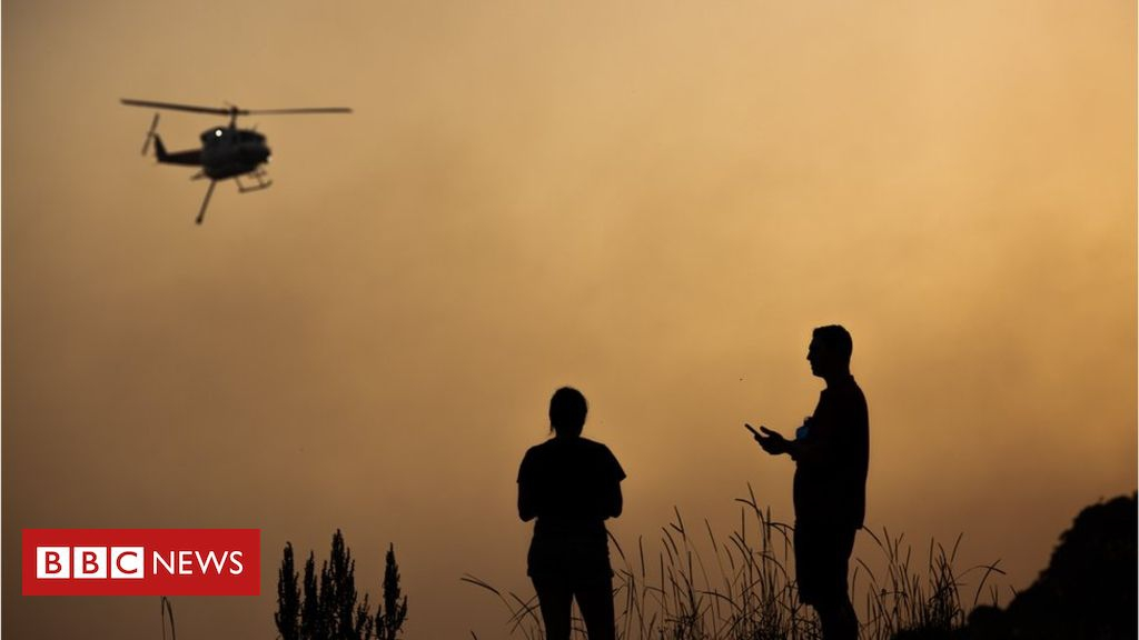 Photo of Australia bushfires: Record number of emergencies in New South Wales
