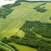 Забайкалье опережает другие регионы ДФО по числу желающих получить дальневосточные гектары