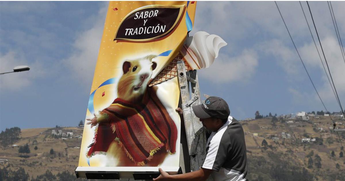Фото Десерт на любителя: мороженое со вкусом морской свинки